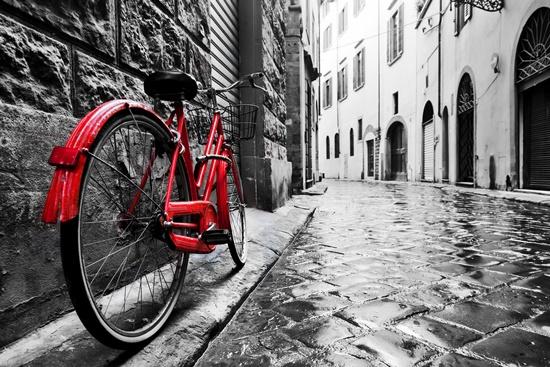 em-quem-tenta-roubar-blog-ceabs-cadeado-bicicleta-provoca-nausea